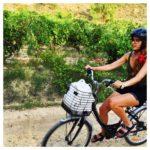 Lost in… La Rioja Alavesa