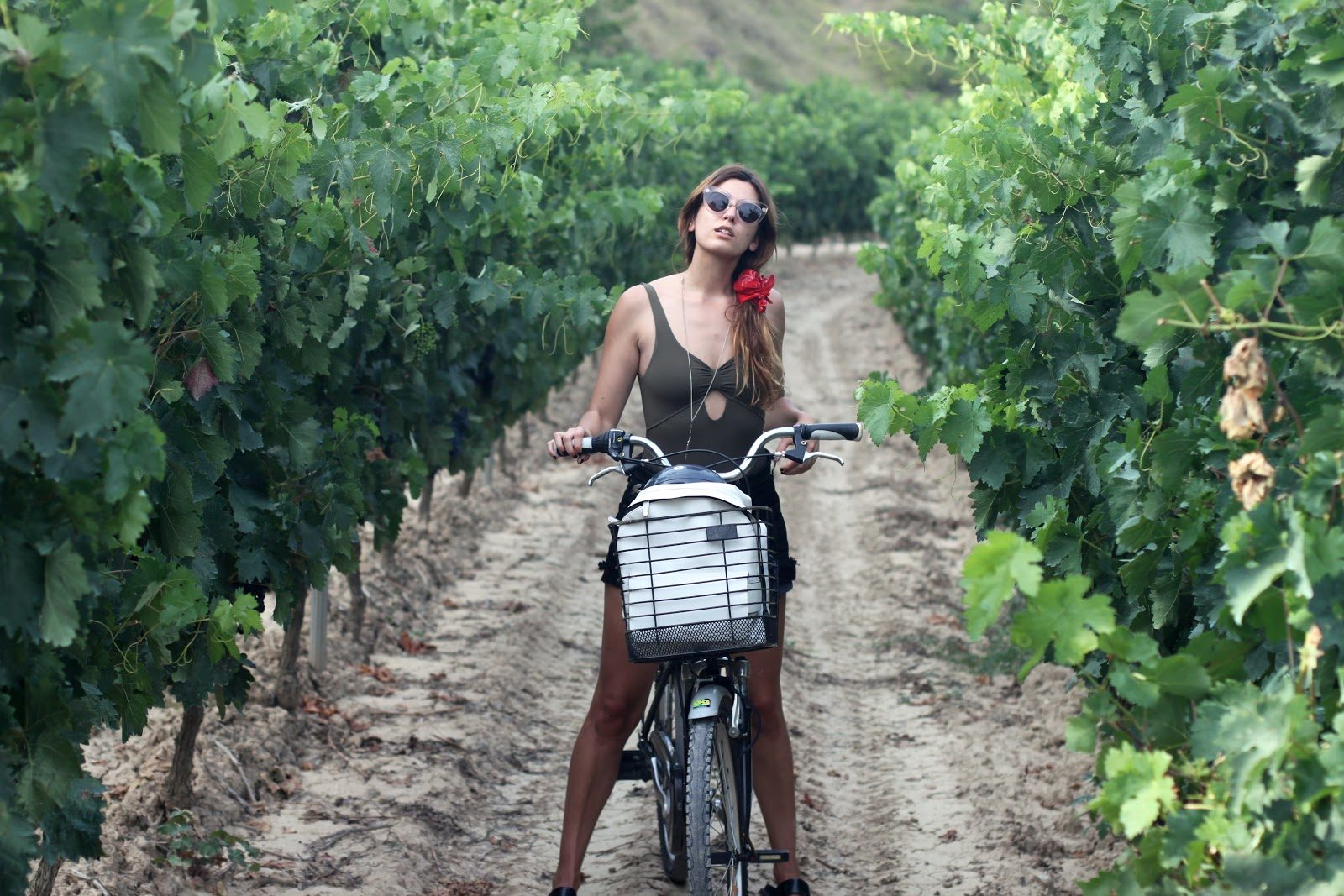 Bici villabuena de álava