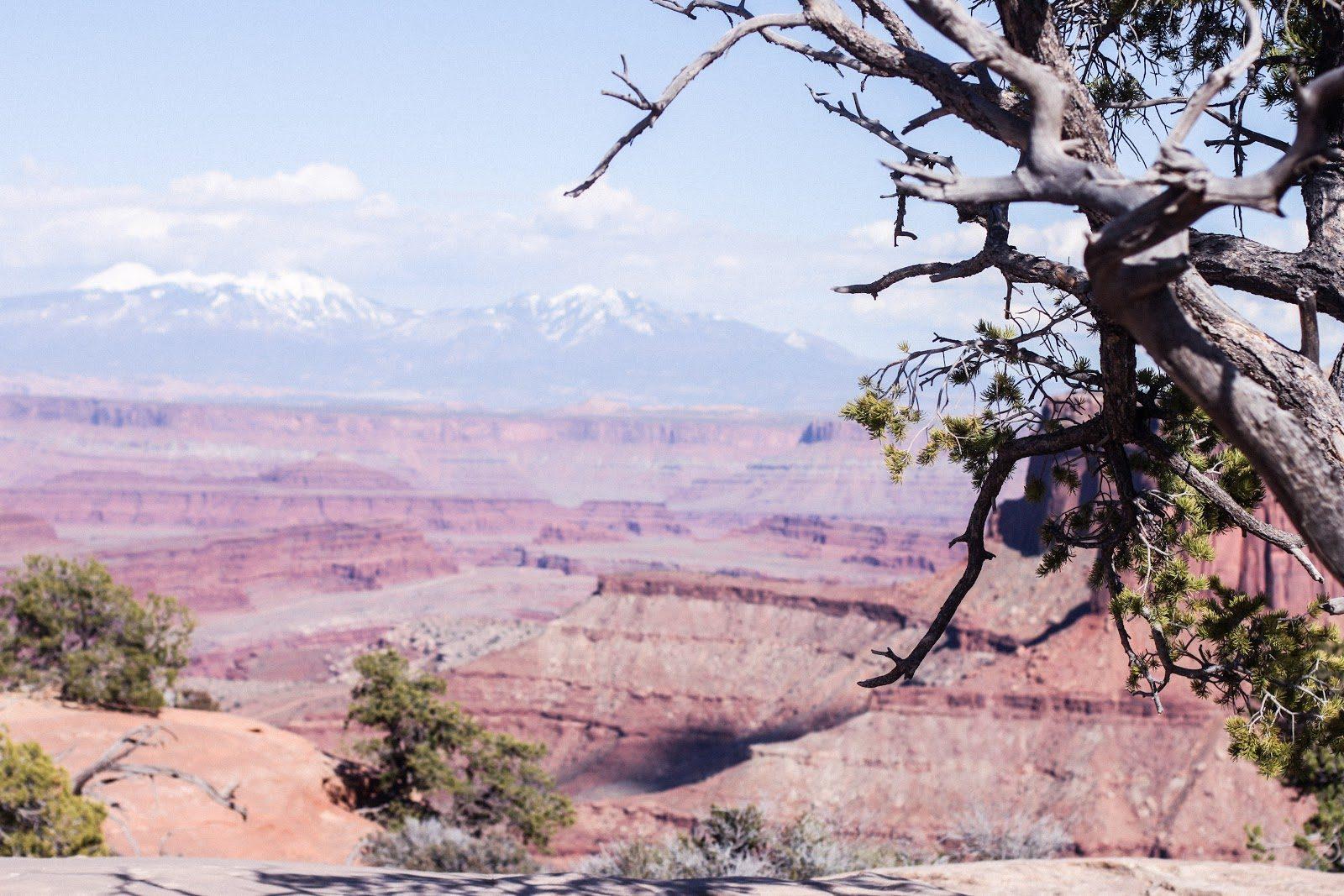 moab canyonlands usa roadtrip utah