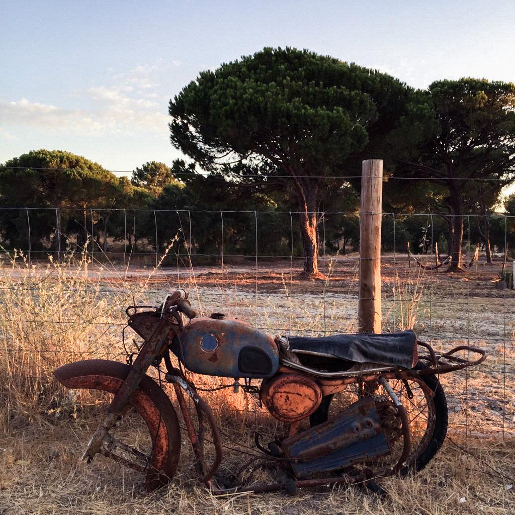 vacaciones_en_portugal_alentejo_comporta_evora_uva_do_monte_herdade_das_barradas_trip_travel_roadtrip_donkeycool_viajes-11
