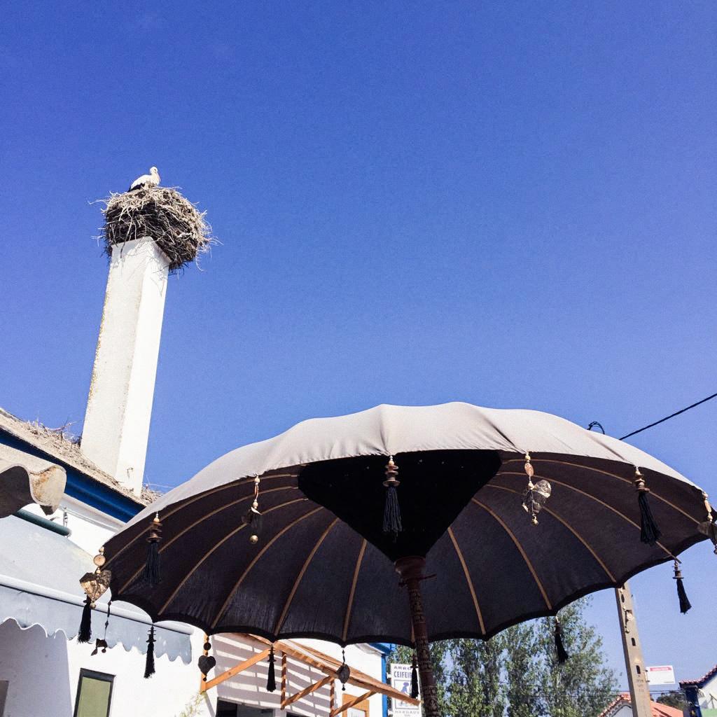 vacaciones_en_portugal_alentejo_comporta_evora_uva_do_monte_herdade_das_barradas_trip_travel_roadtrip_donkeycool_viajes-16